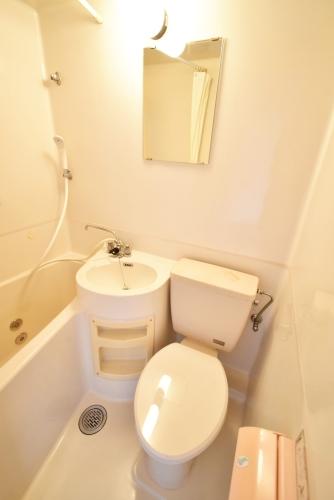 ニューライフマンション / 302号室トイレ