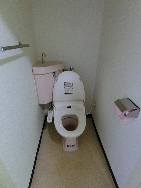 グリーンハウス大橋 / 203号室トイレ