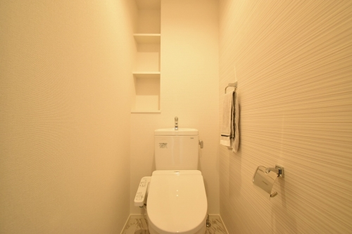 ラ・カリーナ / 101号室トイレ