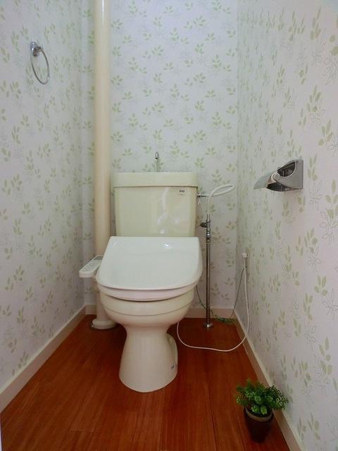 山本ビル / 202号室トイレ