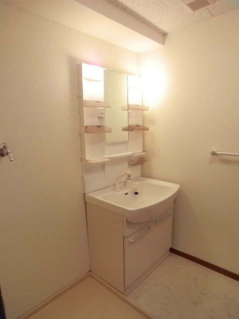 ルミエール博多 / 601号室洗面所