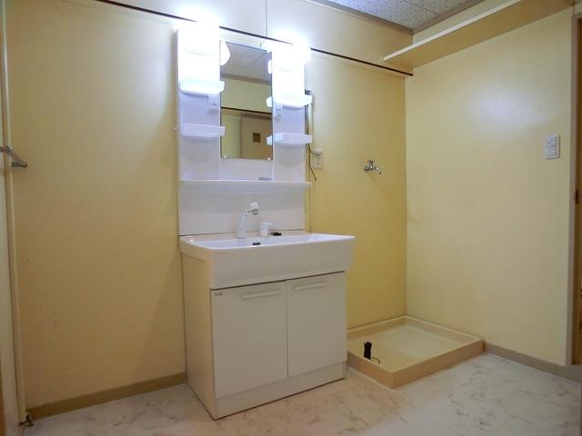 ハイラークやひろ / 406号室洗面所