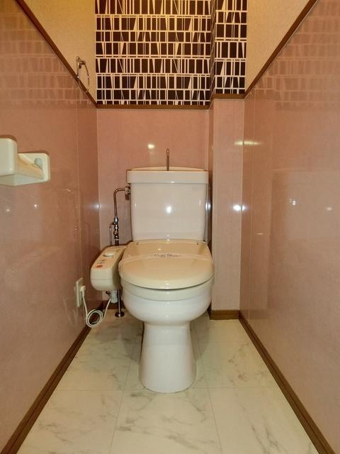 メゾン・ド・アイム / 205号室トイレ