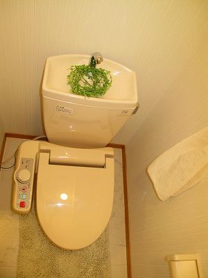 BRILLIANT36 / 703号室トイレ