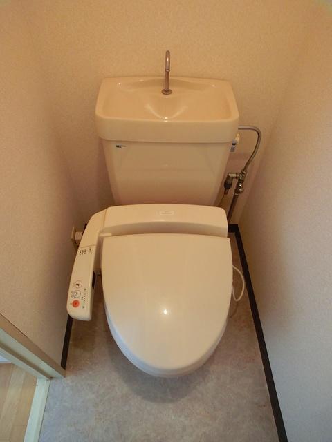フローレスマンション / 302号室トイレ