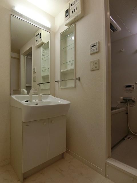 グランドゥール清水 / 401号室洗面所
