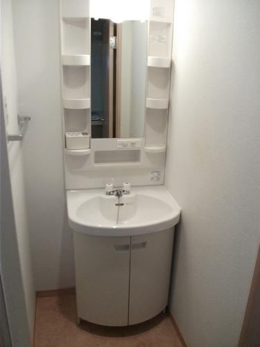 サンパティーク高宮 / 206号室洗面所