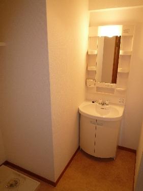 サンパティーク高宮 / 301号室洗面所