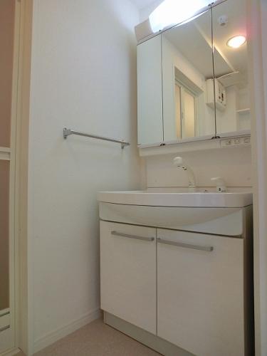 フローレス大橋 / 401号室洗面所