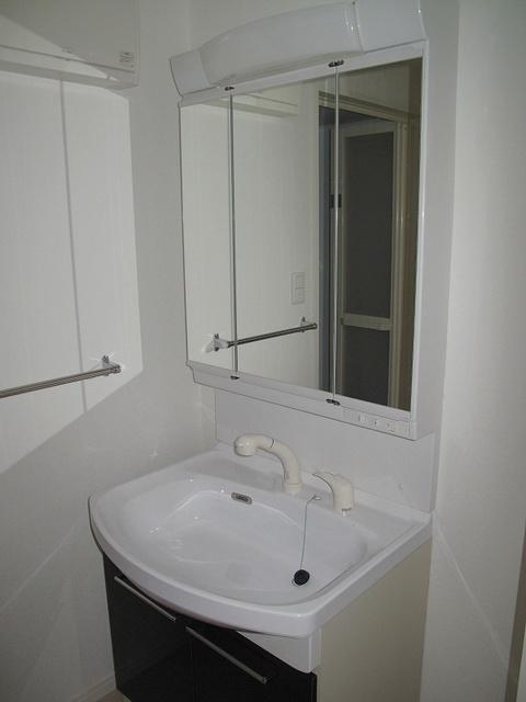 ステラSTⅢ / 206号室洗面所