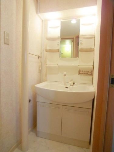船越(義)ビル / 303号室洗面所