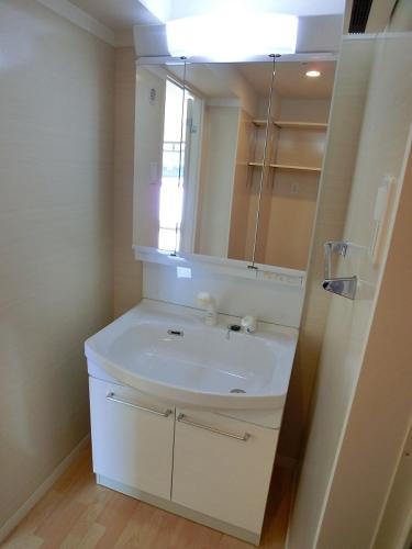 ココテラスK / 505号室洗面所