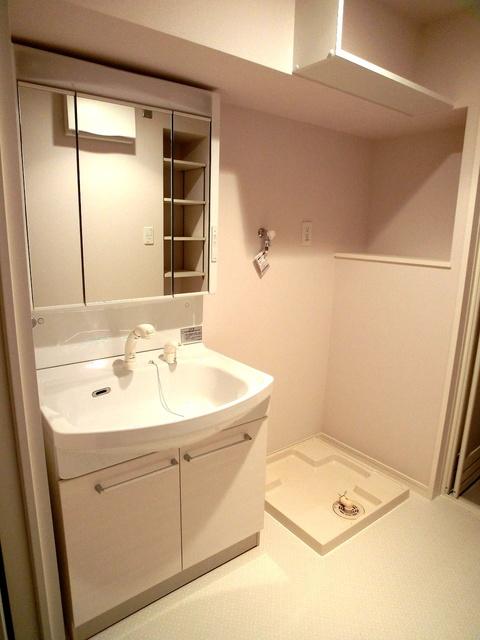 ハルコート大橋 / 303号室洗面所