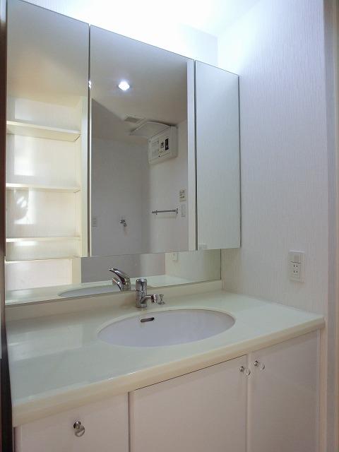 アソシア井尻アヴァンセ / 405号室洗面所