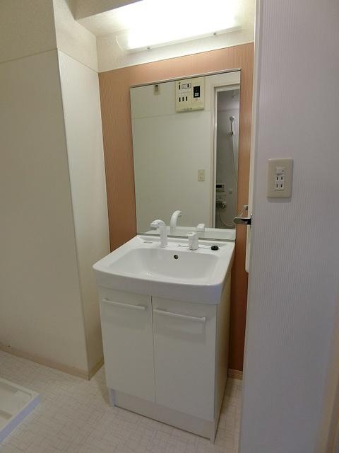 ラヴィ ヌーヴォ / 201号室洗面所