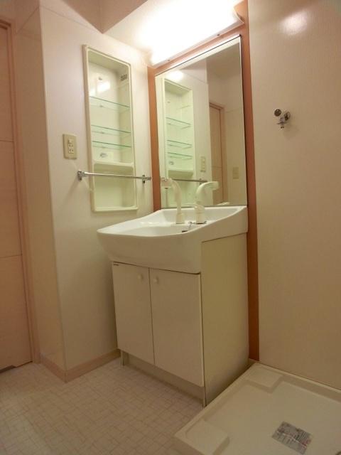 ラヴィ ヌーヴォ / 205号室洗面所