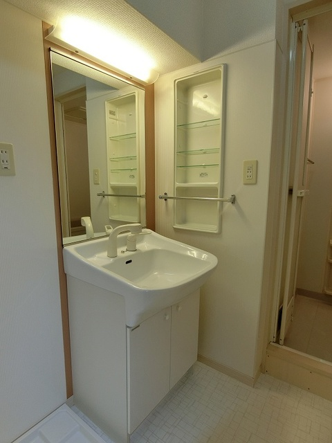 ラヴィ ヌーヴォ / 302号室洗面所