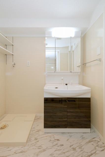 ル・シアン / 103号室洗面所