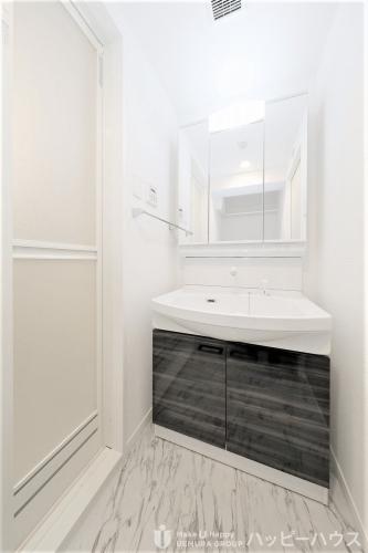 ブリエ ドミール / 101号室洗面所