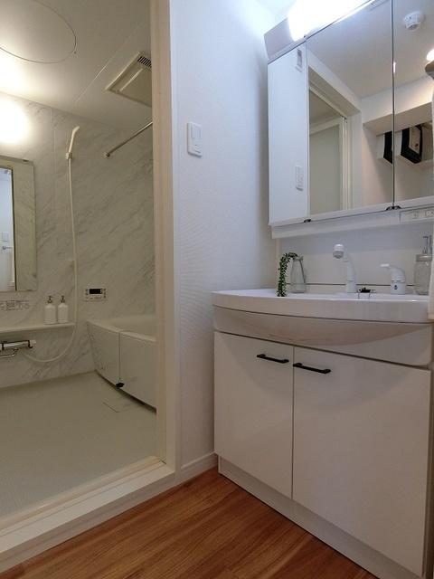 ブリエ ドミール / 202号室洗面所