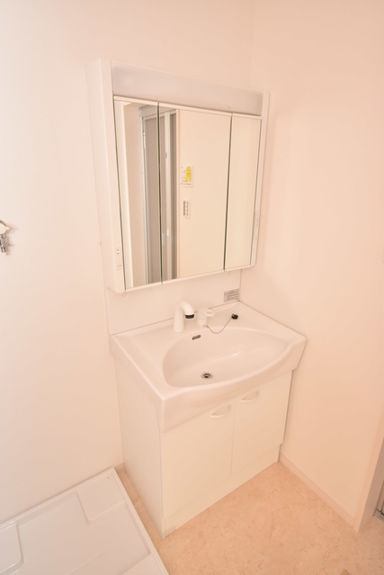 メゾングレイス / 103号室洗面所