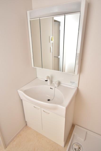メゾングレイス / 202号室洗面所