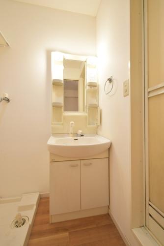 メイプルヴィラ / 201号室洗面所