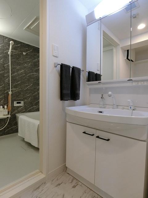 アンビエントN / 201号室洗面所