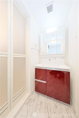 アンビエントN / 401号室洗面所