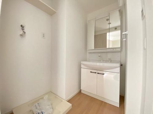 SOPHIA TOKUNAGAⅢ / 401号室洗面所