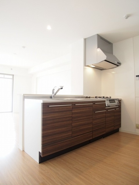 プラス カナール / 302号室キッチン