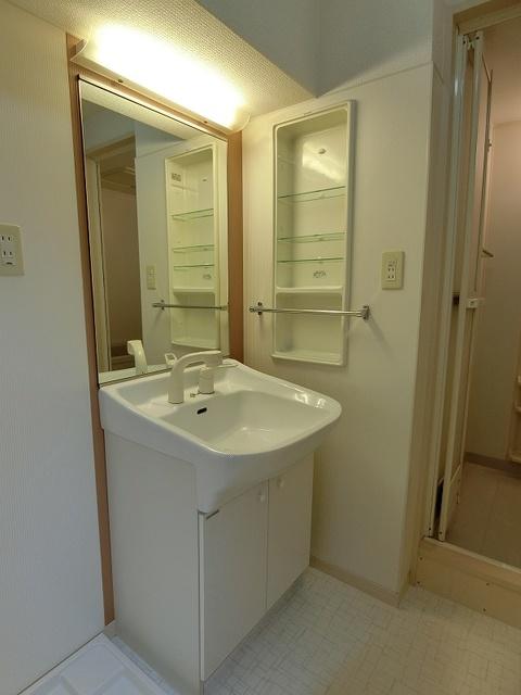 ラヴィ ヌーヴォ / 202号室洗面所