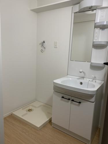 ラ・ブランシュ / 101号室洗面所
