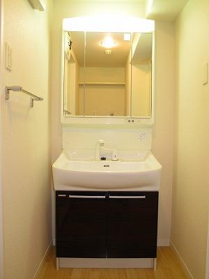 アークトゥルスY / 302号室洗面所