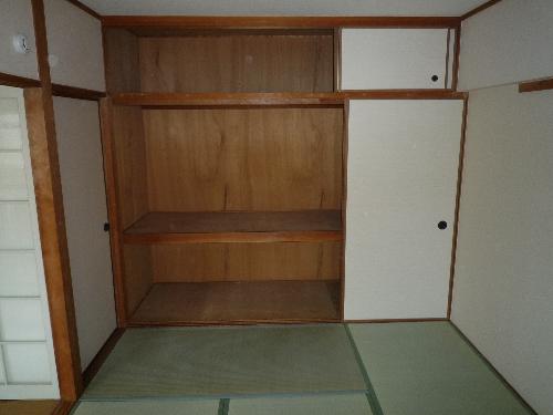コーポウィステリア25 / 305号室和室