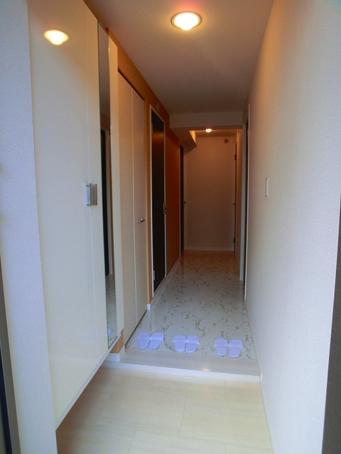 アークトゥルスY / 101号室玄関