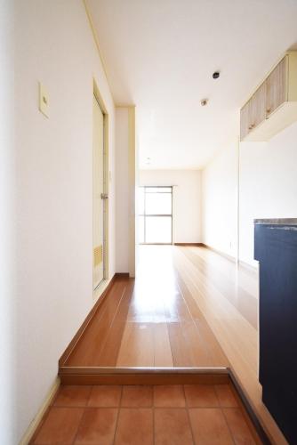 ニューライフマンション / 302号室玄関