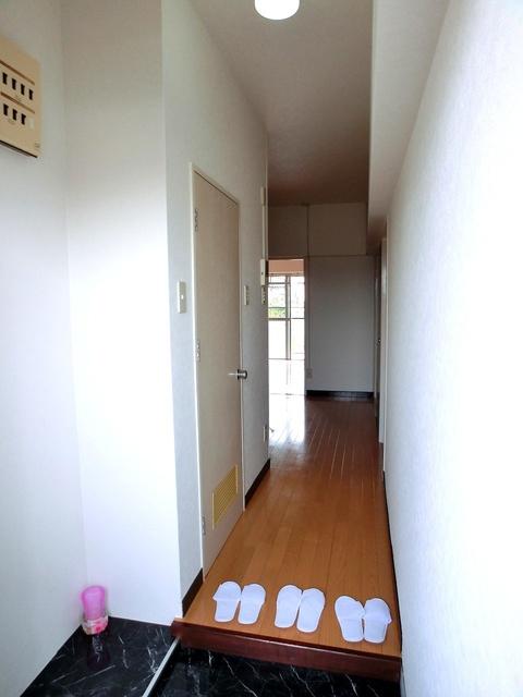 紙屋ビル / 303号室玄関
