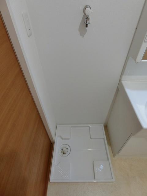 メゾングレイス / 102号室洗面所