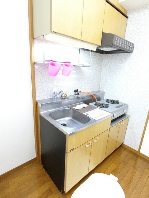 ヴィンテージ唐原 / 2-108号室キッチン