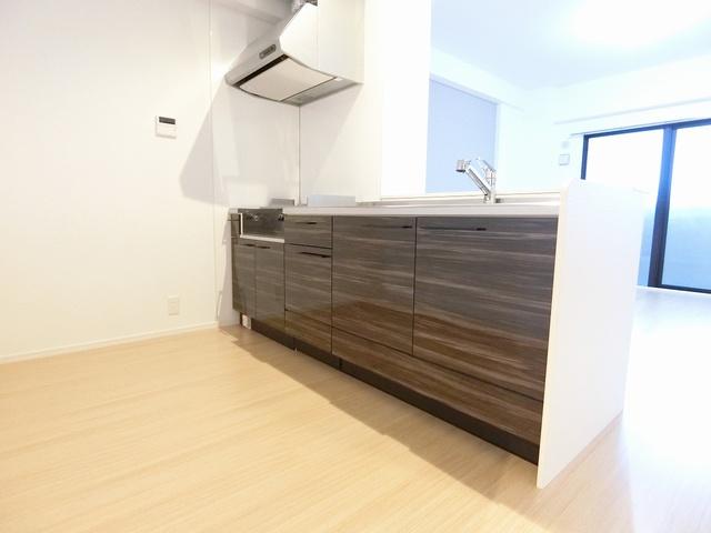 グランドゥール天神 / 106号室キッチン