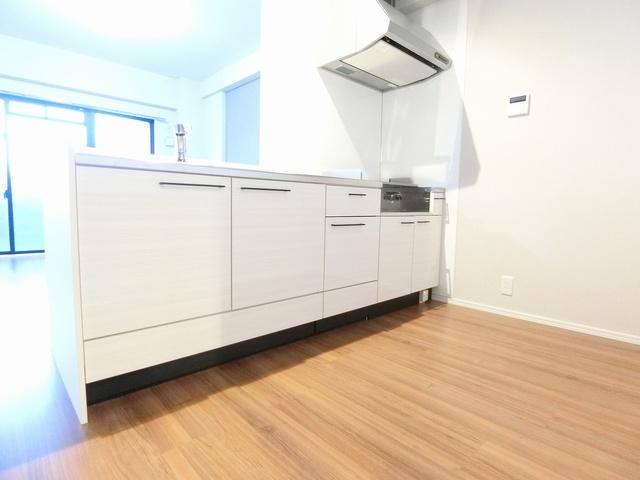 グランドゥール天神 / 205号室キッチン
