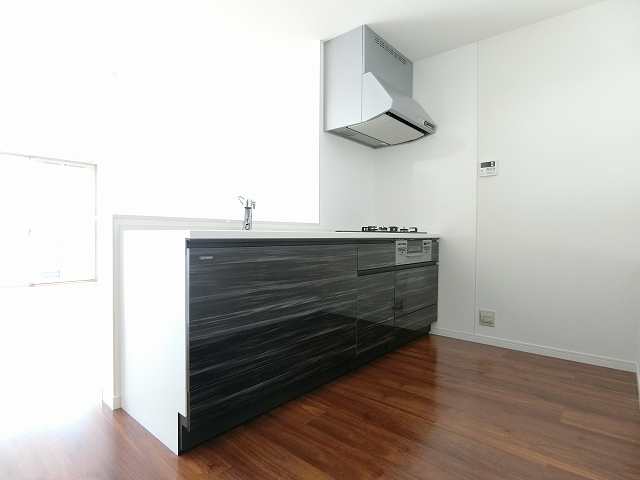 レア・エクロール / 201号室キッチン