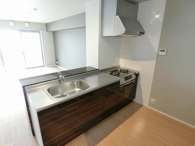 プレアタウン河東 / B-202号室キッチン