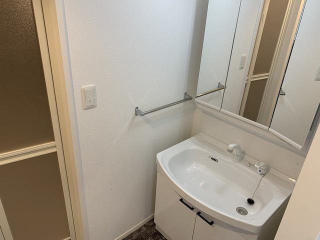 グランドゥール天神 / 206号室洗面所