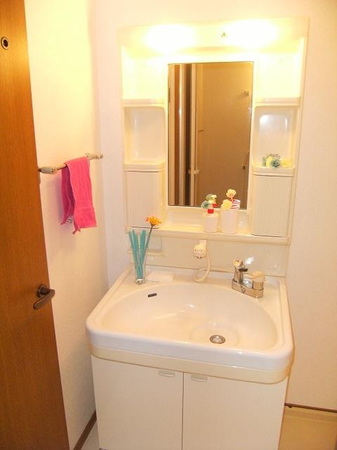ジュネス和白丘 / 302号室洗面所
