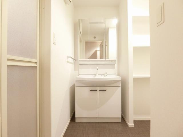 プレアタウン河東 / A-105号室洗面所