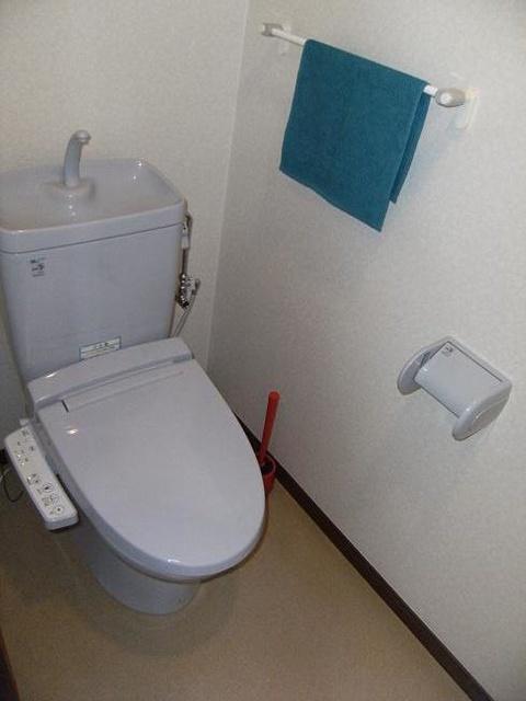 ビ・ザ・ビ・ランド(ペット共生) / 301号室トイレ