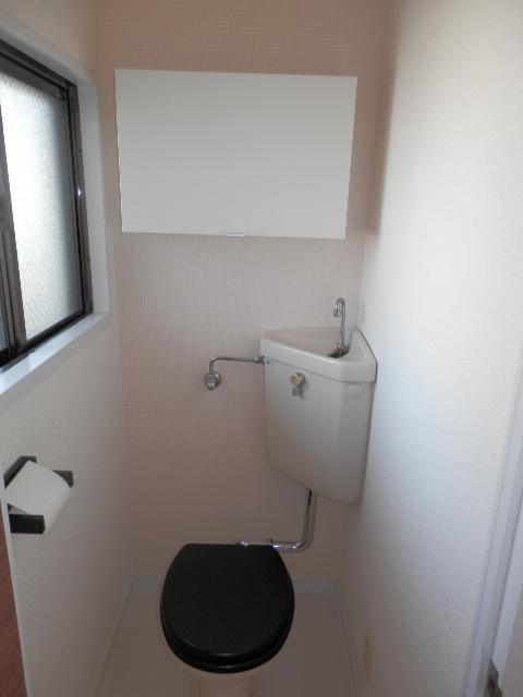 安隆ハイツ / 301号室トイレ