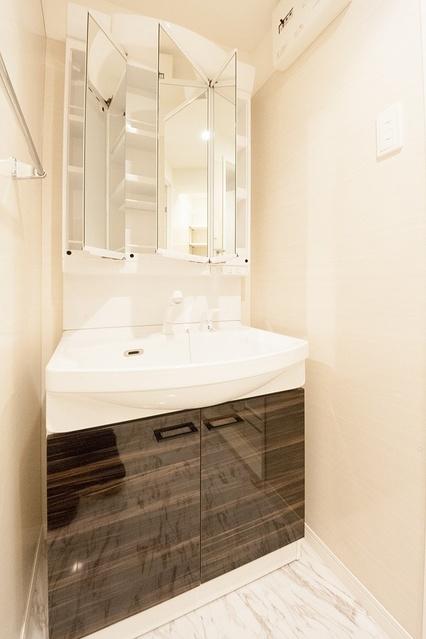 ヴィクトワールⅡ / 301号室洗面所